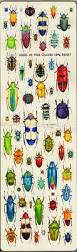 43 best ideas insects painted on rocks images on pinterest