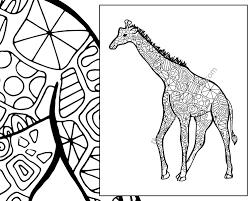 giraffe coloring sheet animal coloring pdf zentangle