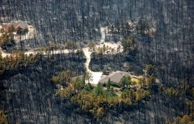 house survives forest fire in colorado business insider
