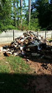 11alive com new legislation could put teeth in trash pit