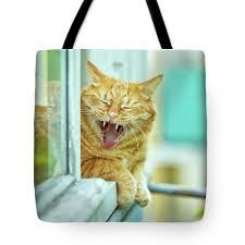 oksana ariskina tote bag featuring the photograph yawning ginger