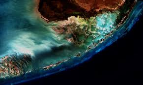 satellite map of florida florida coral community october 25 2000