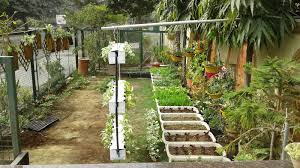 How To Make Organic Manure From Kitchen Waste Bioneer Machine Converts Organic Waste Into Compost In Just A Day