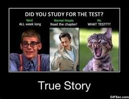 Maury Meme Generator - study memes things i do when i to study weknowmemes best 25