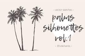 palm leaf photos graphics fonts themes templates creative market
