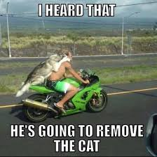 Funny Motorcycle Meme - funny fathead