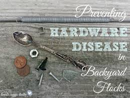 preventing hardware disease heavy metal poisoning in backyard