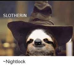 Memes Sloth - 25 best memes about baby sloth baby sloth memes