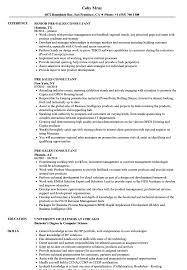 sales experience resume pre sales consultant resume sles velvet