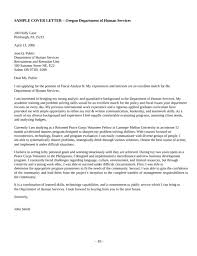 solution analyst cover letter