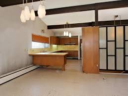 Mid Century Modern Kitchen by Mid Century Modern Cabinet Style Kitchen All Modern Home Designs