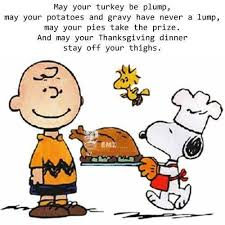 62 best thanksgiving humor quotes images on