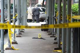 east clothing exclusive murders at nycha buildings add up ny daily news