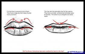how do you draw lips 1000 images about lip sketches on pinterest