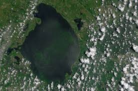 Satellite Map Of Florida by New Satellite Images Show Extent Of Florida Algal Bloom Popular