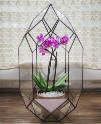 glass terrarium large rocket wedding box stained glass orchid