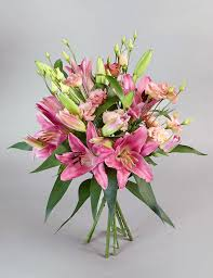 Pink Lily Flower Lilies White Lilies Flowers Lily Bouquets U0026 Plants M U0026s