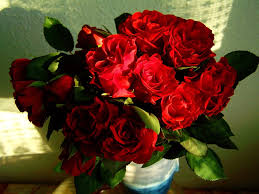 Red Rose Bouquet Free Photo Red Rose Bouquet Flower Free Image On Pixabay 670648