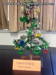 Christmas Tree Meme - funny pictures of the day humor me pinterest funny pictures