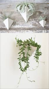 Wall Mounted Planter 53 Indoor Garden Idea U2013 Hang Your Plants From The Ceiling U0026 Walls