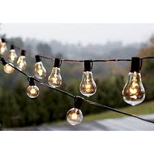 Edison Lights String by Vintage Edison Bulb Outdoor String Lights My Wish List