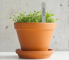 garden decor fancy accessories for small herb garden decoration