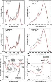 mycose b b si ge photodynamic damage predominates on different targets depending on
