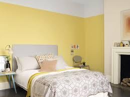 Home Decorating Colour Schemes by Decorating Colour Ideas Home Design Ideas