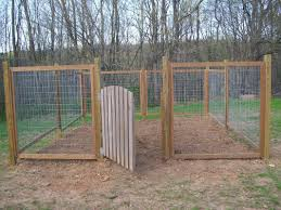 outdoor spaces for mini pigs fencing housing u0026 shade mini pig info