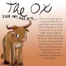 year of the ox 1997 21 best year of the ox images on astrology