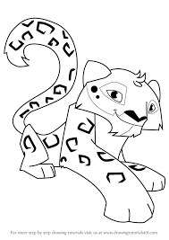 learn draw snow leopard animal jam animal jam step