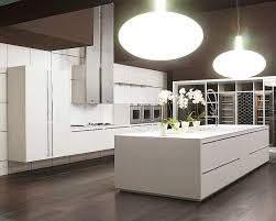 Kitchen Cabinet Color Ideas Simple Modern White Wood Kitchen Cabinets Add A Lush Look D On
