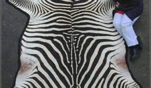 Genuine Zebra Rug Real Zebra Skin Rug Roselawnlutheran