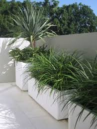 Concrete Planter Boxes by Olive In Modern Pot On Rooftop Garden Garden Elements