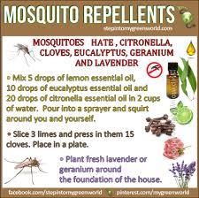 natural mosquito repellents natural mosquito repellent with essential oils optiderma