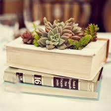 Rectangular Succulent Planter by 25 Best Succulent Display Ideas On Pinterest Birdcage Planter