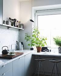plantes cuisine la plante verte d intérieur archzine fr