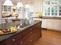 home renovation tips pet friendly home remodeling tips tim lemke construction
