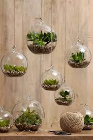 Indoor Gardening by Furniture U0026 Accessories Indoor Gardening Beginner Creative