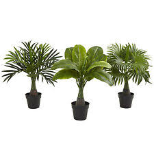 palm tree potted floral décor ebay