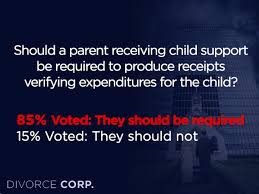 should parents who receive child support be required to produce
