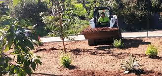 Landscape Management Services by Greenview Landscape Management Services