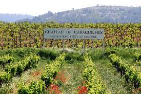 Château De Caraguilhes Domaine De Château De Caraguilhes And Soil