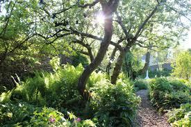 a dreamy secret garden in somerset how to spend it