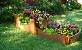 raised bed garden layout home outdoor decoration