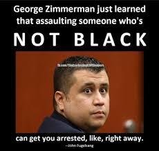 Trayvon Martin Memes - trayvon martin teaching social justice