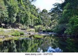 Gardeners Falls Maleny - beautiful gardners falls in maleny sunshine coast australia