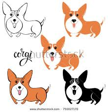 cute welsh corgi cartoon stock images royalty free images
