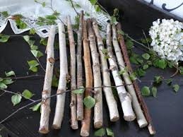 10 white birch branches birch logs birch wood home decor
