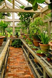 Small Backyard Greenhouse by Best 25 Greenhouses Ideas On Pinterest Diy Greenhouse